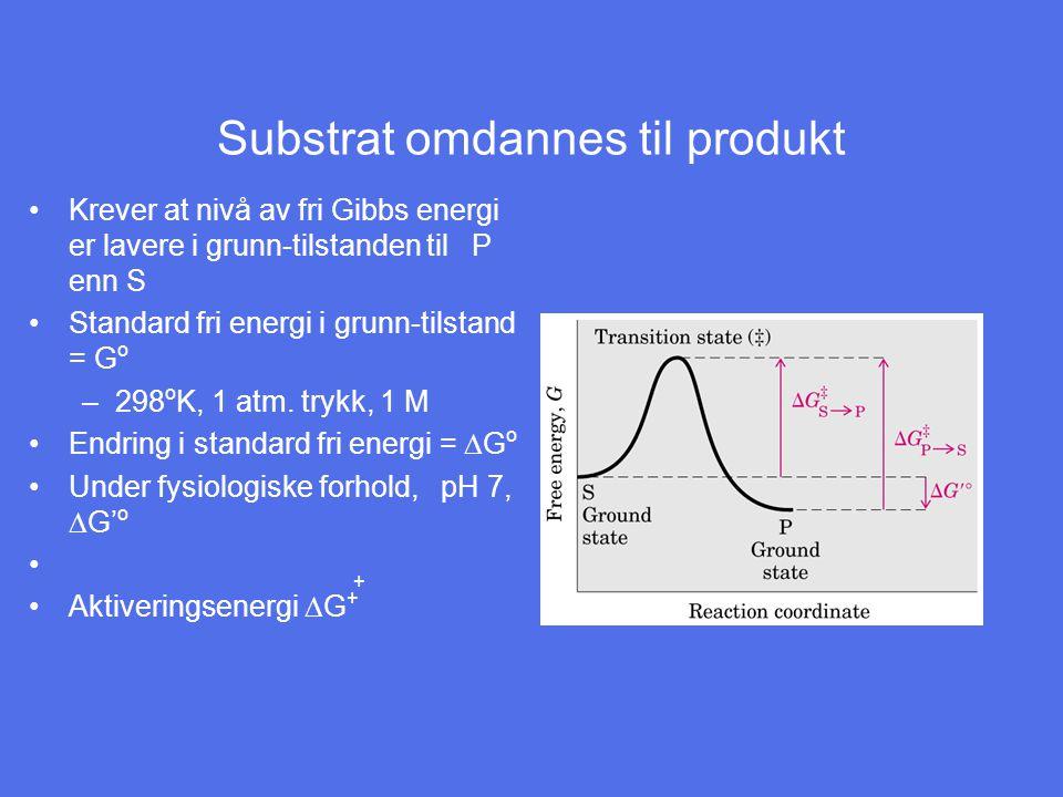 Substrat omdannes til produkt