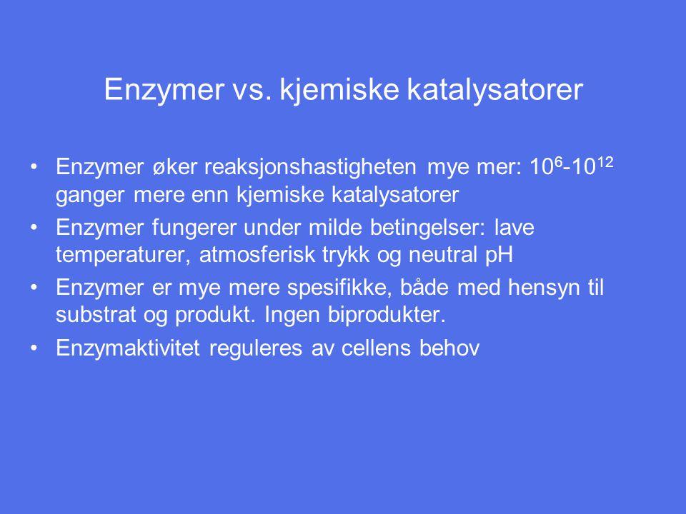 Enzymer vs. kjemiske katalysatorer