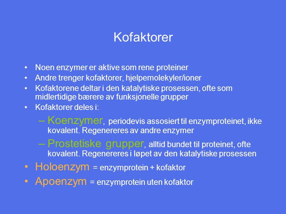 Kofaktorer Noen enzymer er aktive som rene proteiner. Andre trenger kofaktorer, hjelpemolekyler/ioner.