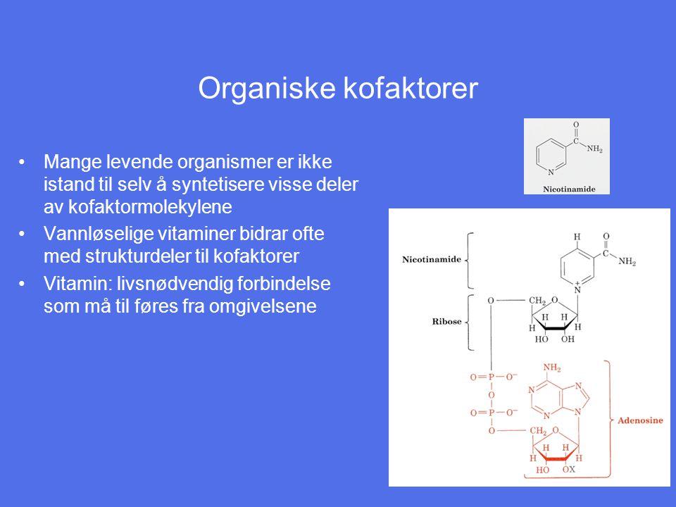 Organiske kofaktorer Mange levende organismer er ikke istand til selv å syntetisere visse deler av kofaktormolekylene.