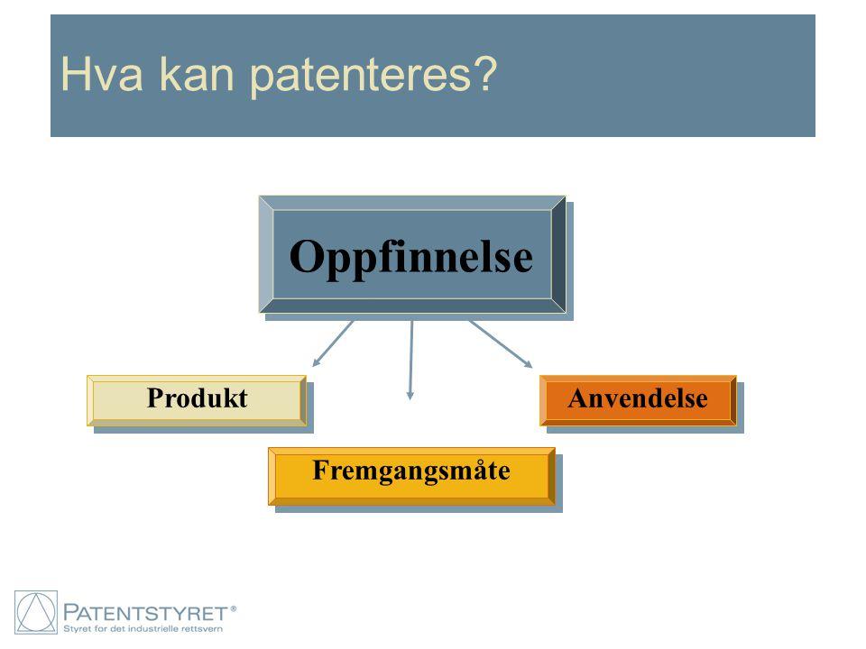 Hva kan patenteres Anvendelse Fremgangsmåte Produkt Oppfinnelse