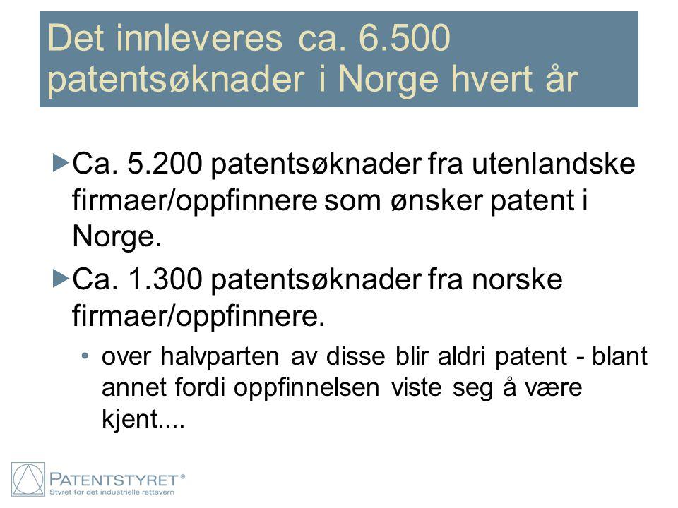 Det innleveres ca. 6.500 patentsøknader i Norge hvert år