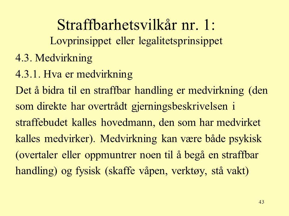 Straffbarhetsvilkår nr. 1: Lovprinsippet eller legalitetsprinsippet
