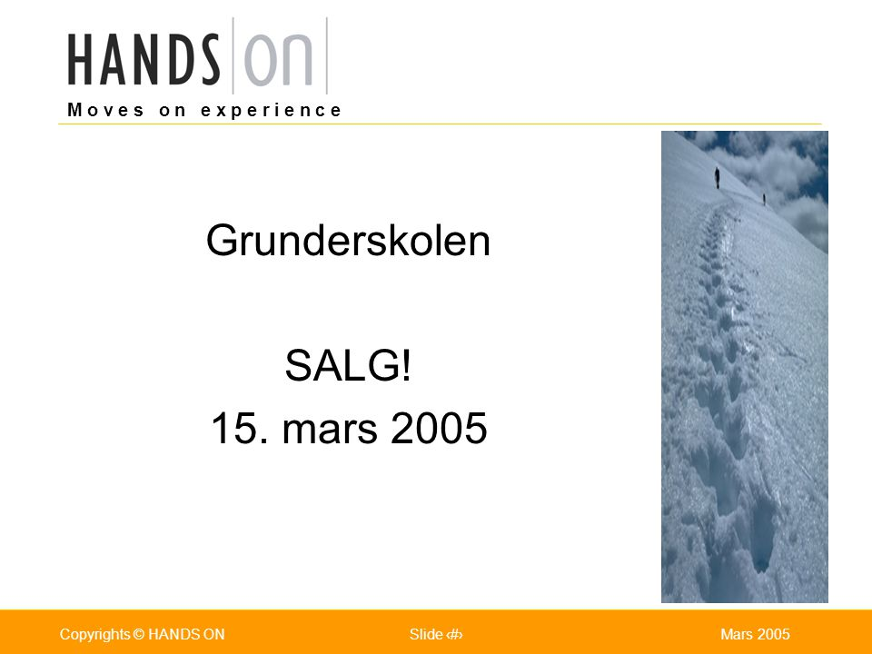 Grunderskolen SALG! 15. mars 2005