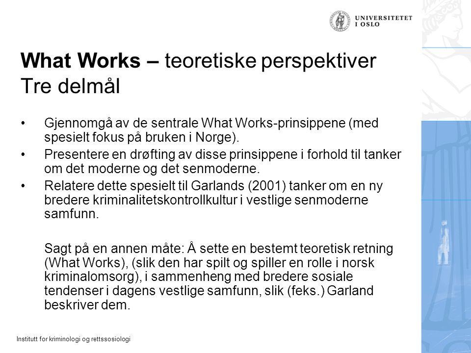 What Works – teoretiske perspektiver Tre delmål