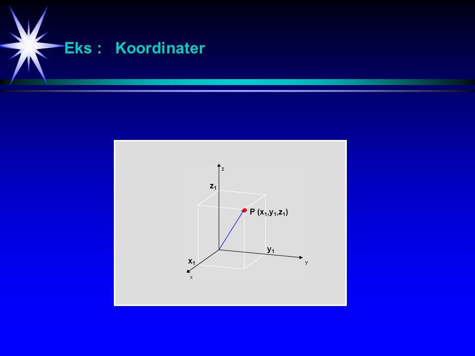 Eks : Koordinater z1 P (x1,y1,z1) y1 x1