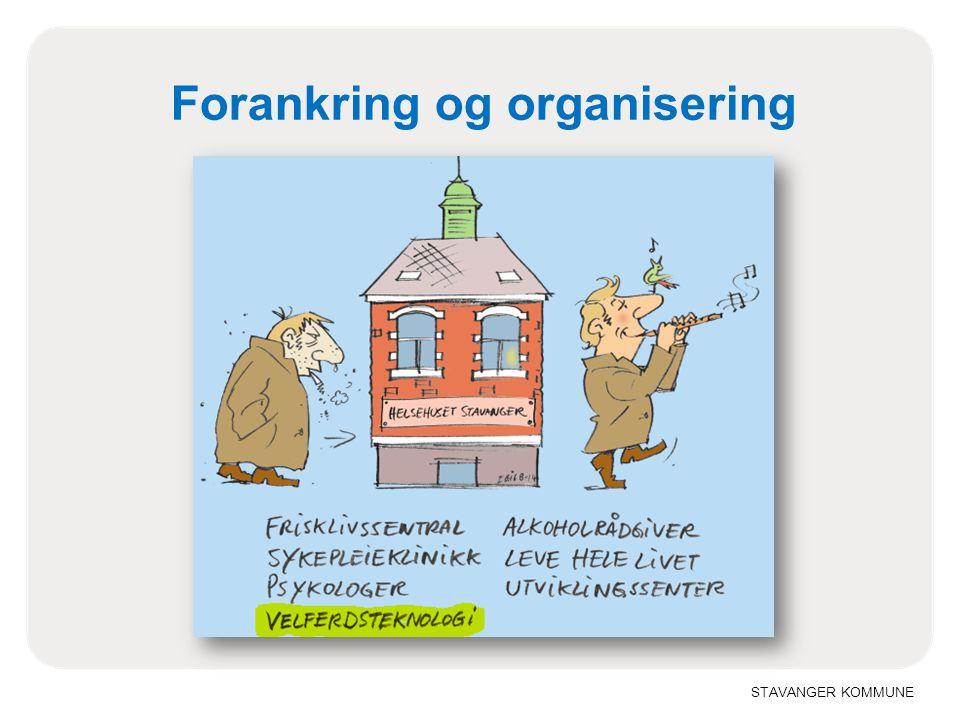 Forankring og organisering
