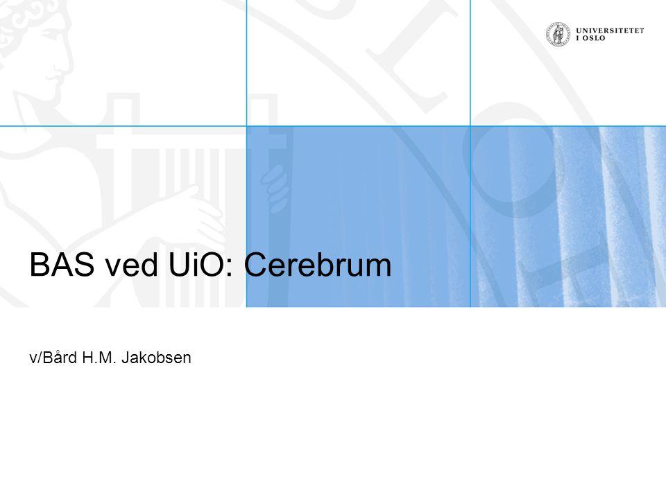 BAS ved UiO: Cerebrum v/Bård H.M. Jakobsen