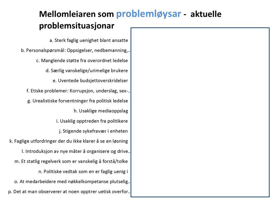 Mellomleiaren som problemløysar - aktuelle problemsituasjonar