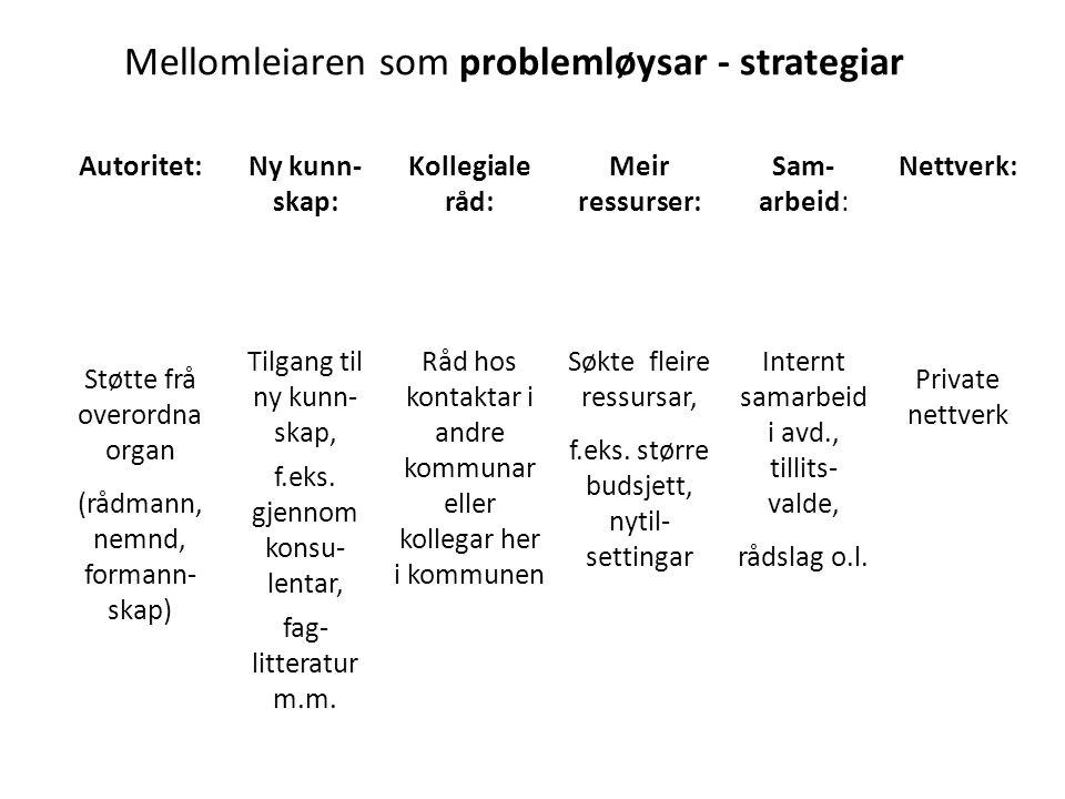 Mellomleiaren som problemløysar - strategiar