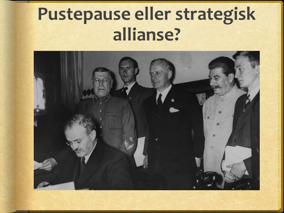 Pustepause eller strategisk allianse