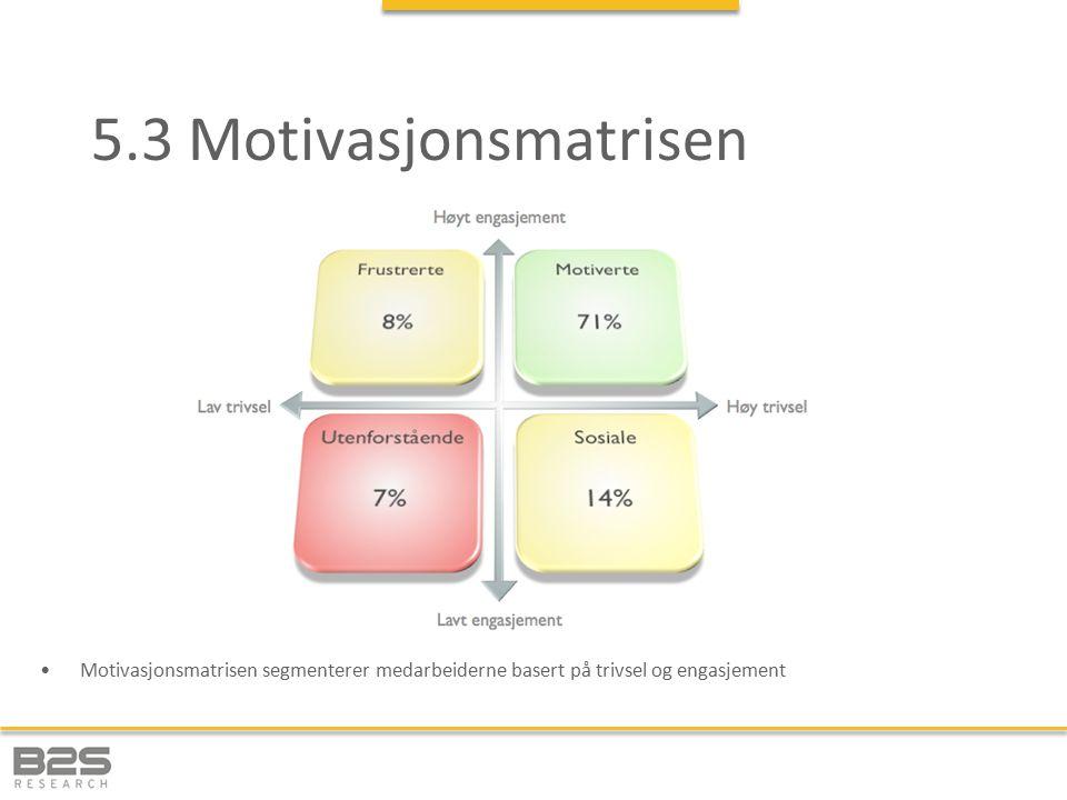 5.3 Motivasjonsmatrisen Motivasjonsmatrisen segmenterer medarbeiderne basert på trivsel og engasjement.