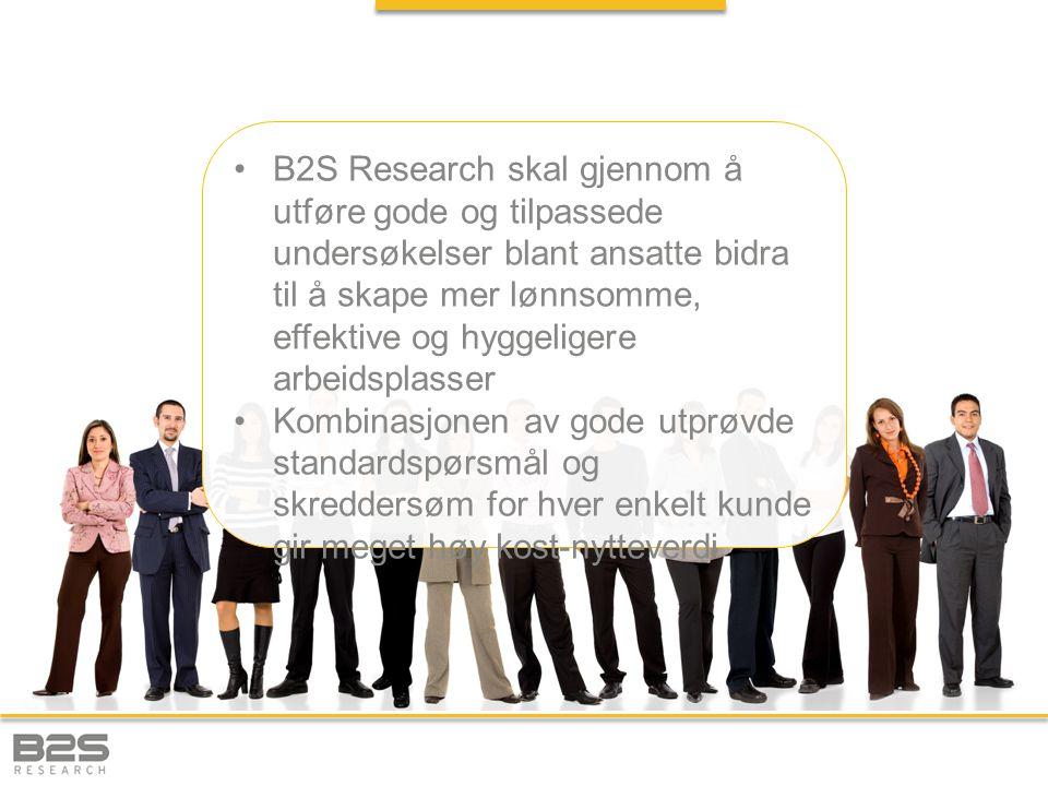 B2S Research skal gjennom å utføre gode og tilpassede undersøkelser blant ansatte bidra til å skape mer lønnsomme, effektive og hyggeligere arbeidsplasser
