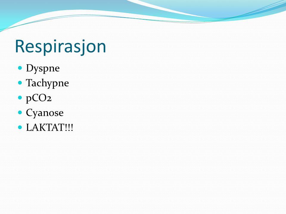 Respirasjon Dyspne Tachypne pCO2 Cyanose LAKTAT!!!