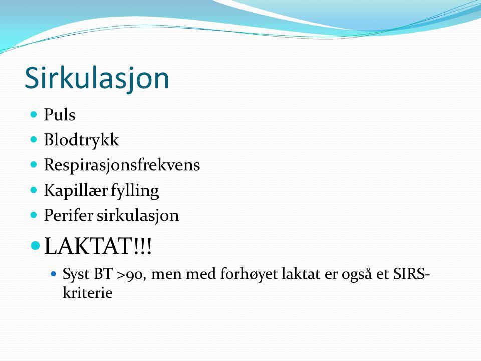 Sirkulasjon LAKTAT!!! Puls Blodtrykk Respirasjonsfrekvens