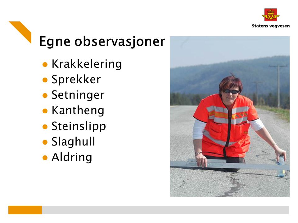 Egne observasjoner Krakkelering Sprekker Setninger Kantheng Steinslipp