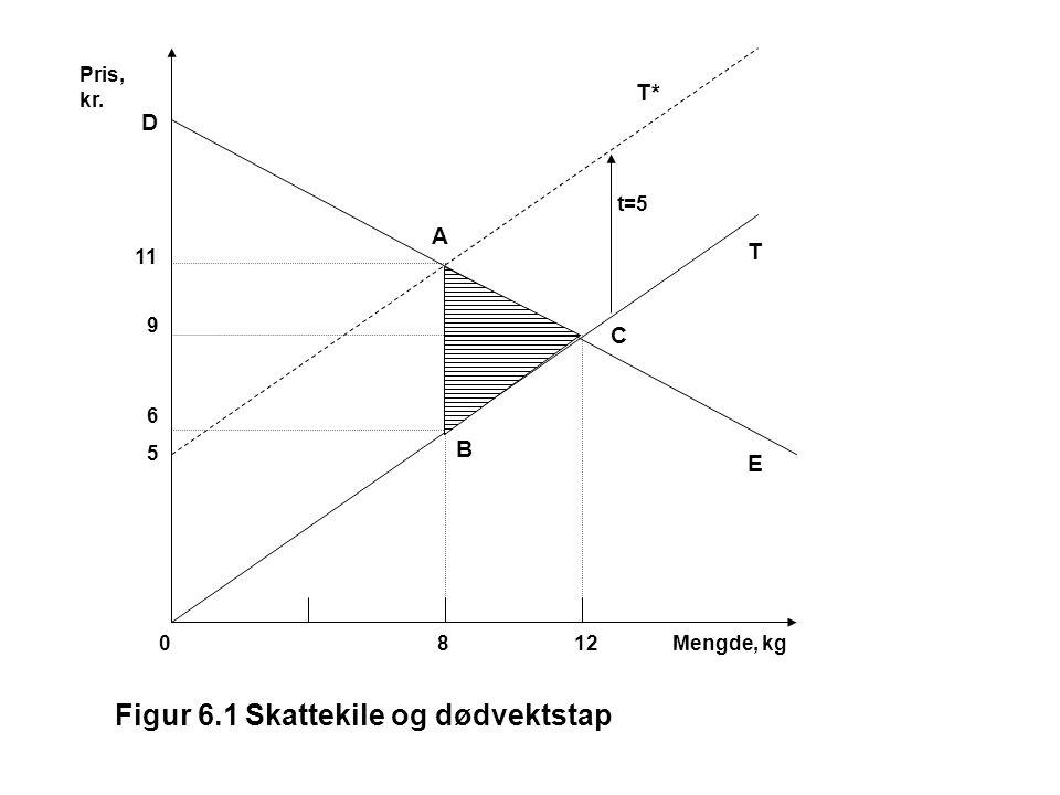 Figur 6.1 Skattekile og dødvektstap