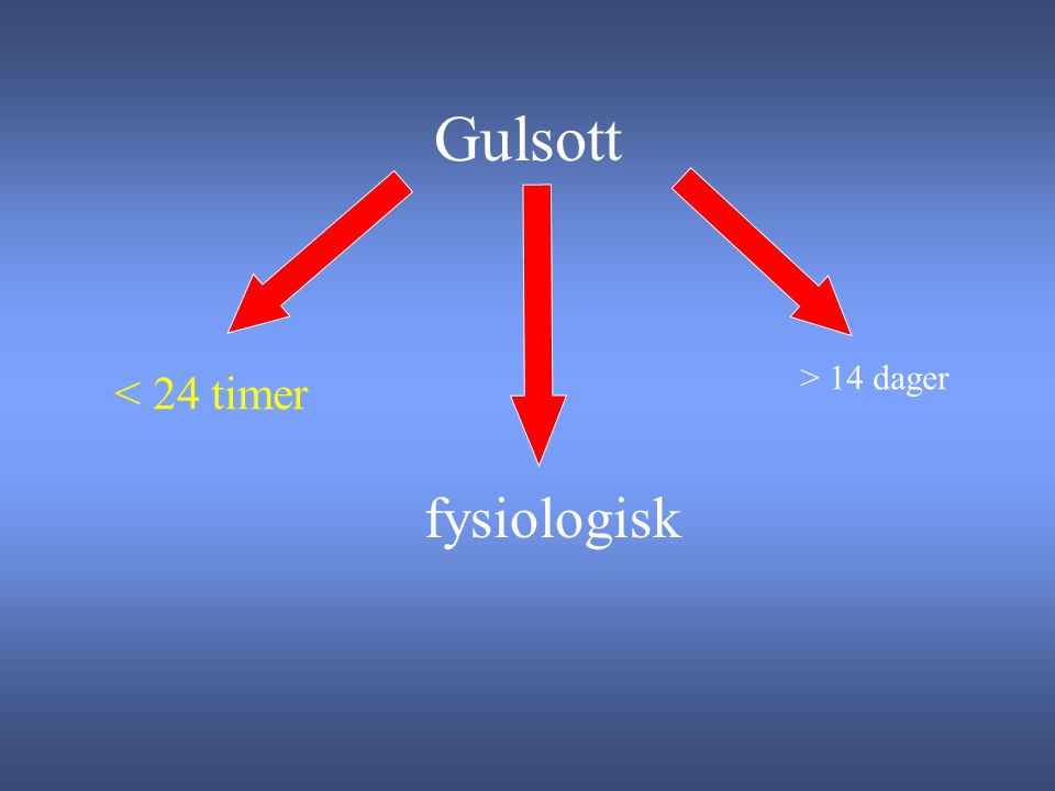 Gulsott > 14 dager < 24 timer fysiologisk