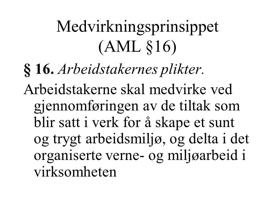 Medvirkningsprinsippet (AML §16)