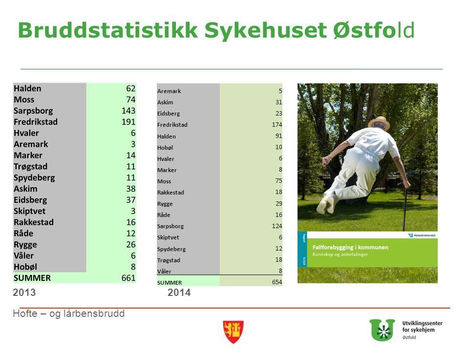 Bruddstatistikk Sykehuset Østfold
