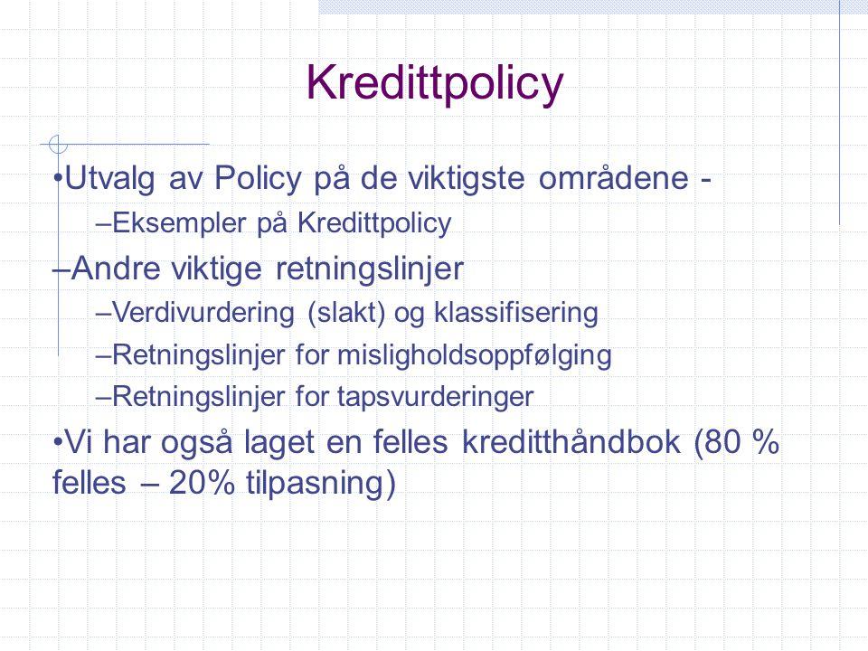 Kredittpolicy Utvalg av Policy på de viktigste områdene -