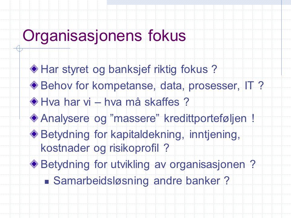 Organisasjonens fokus