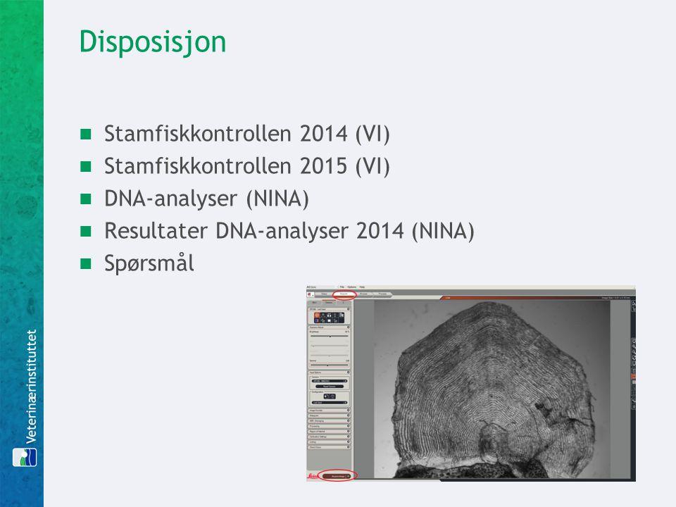 Disposisjon Stamfiskkontrollen 2014 (VI) Stamfiskkontrollen 2015 (VI)
