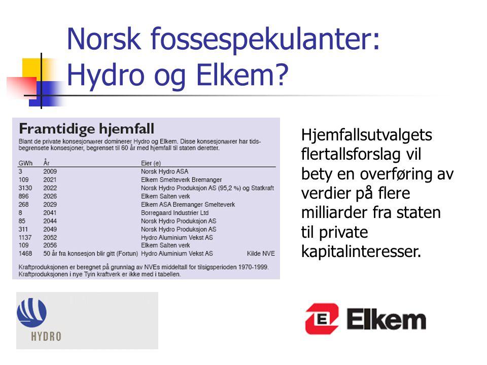 Norsk fossespekulanter: Hydro og Elkem