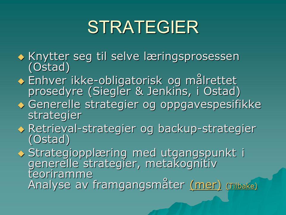 STRATEGIER Knytter seg til selve læringsprosessen (Ostad)