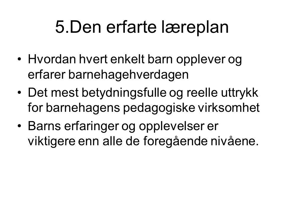 5.Den erfarte læreplan Hvordan hvert enkelt barn opplever og erfarer barnehagehverdagen.
