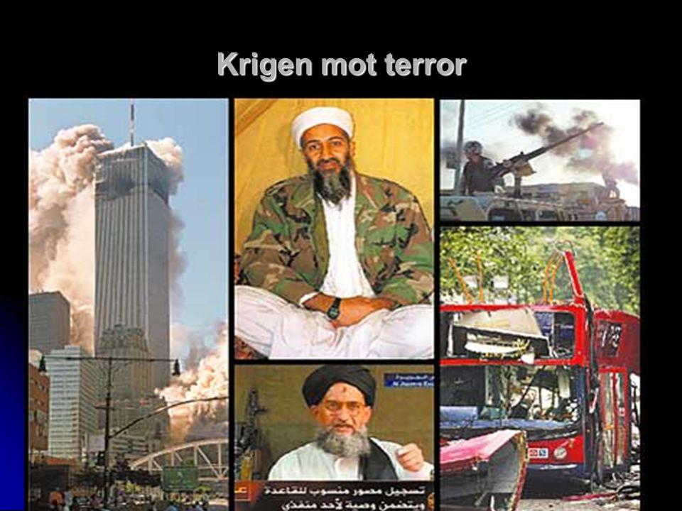 Krigen mot terror