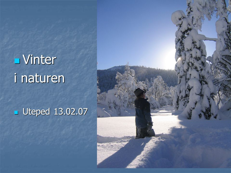 Vinter i naturen Uteped 13.02.07