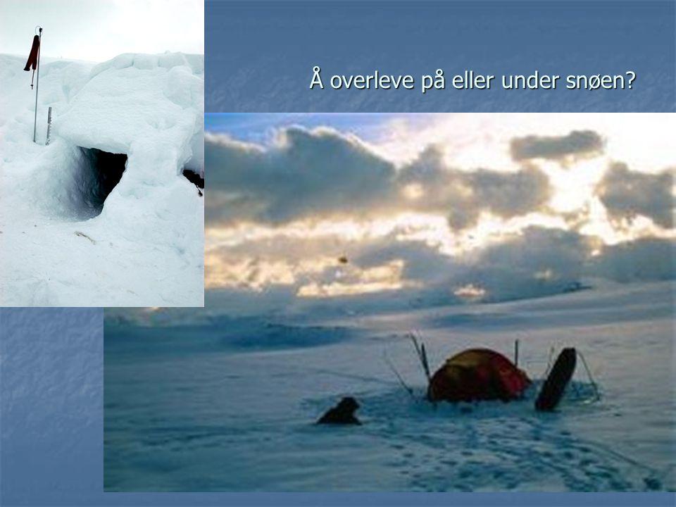 Å overleve på eller under snøen