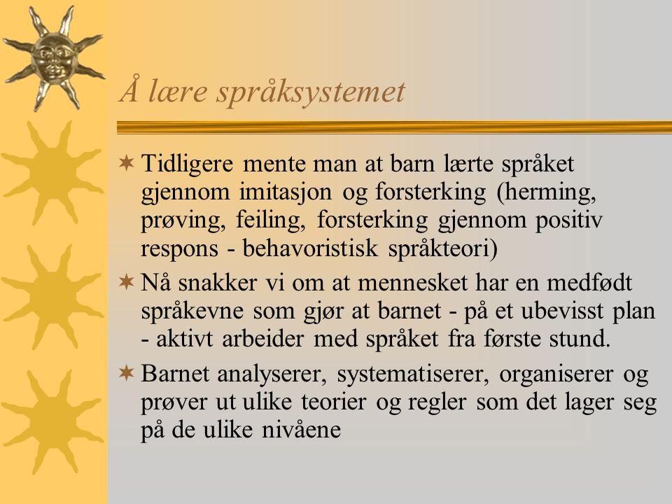Å lære språksystemet