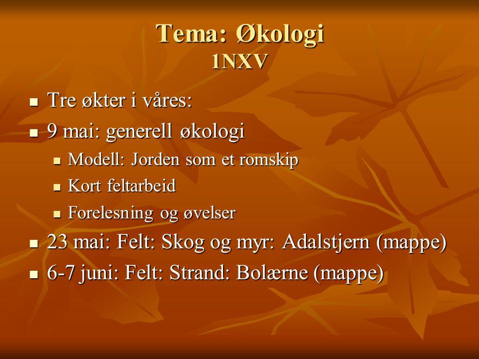 Tema: Økologi 1NXV Tre økter i våres: 9 mai: generell økologi