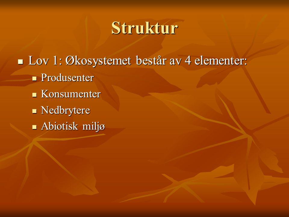 Struktur Lov 1: Økosystemet består av 4 elementer: Produsenter