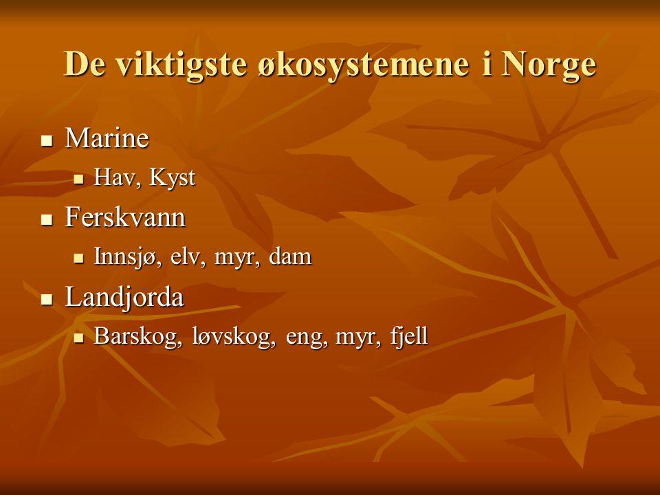 De viktigste økosystemene i Norge