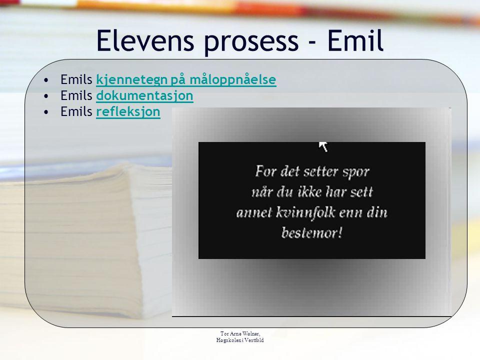 Elevens prosess - Emil Emils kjennetegn på måloppnåelse