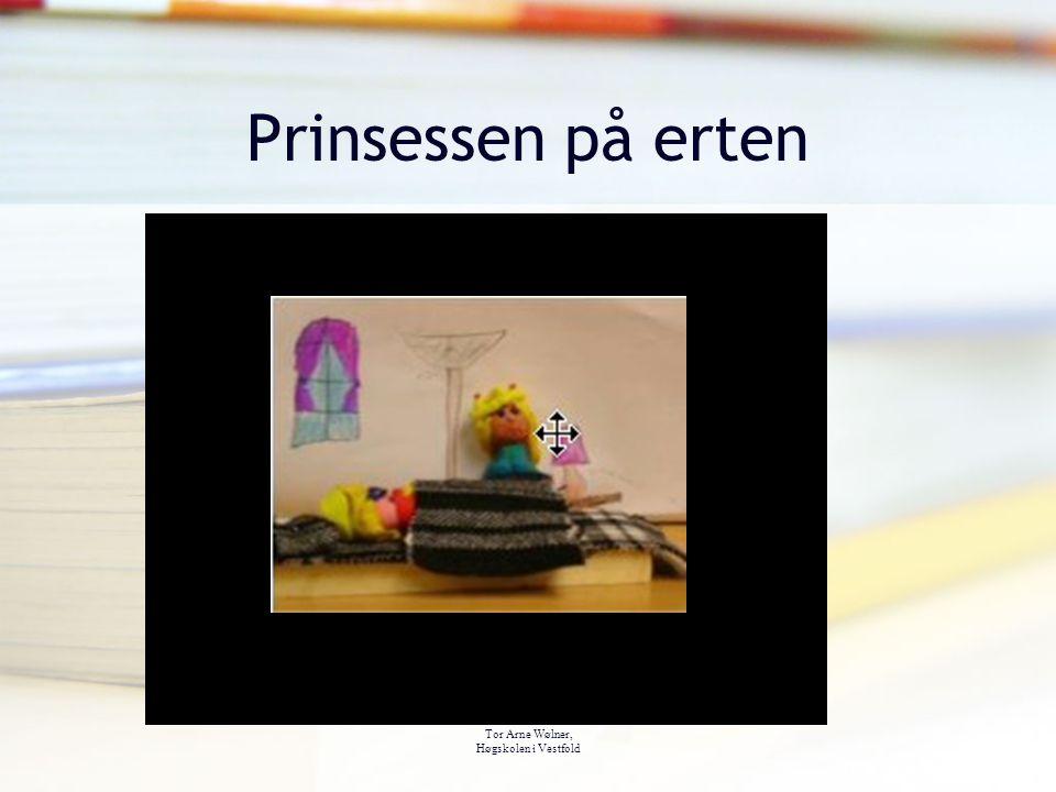 Prinsessen på erten Tor Arne Wølner, Høgskolen i Vestfold