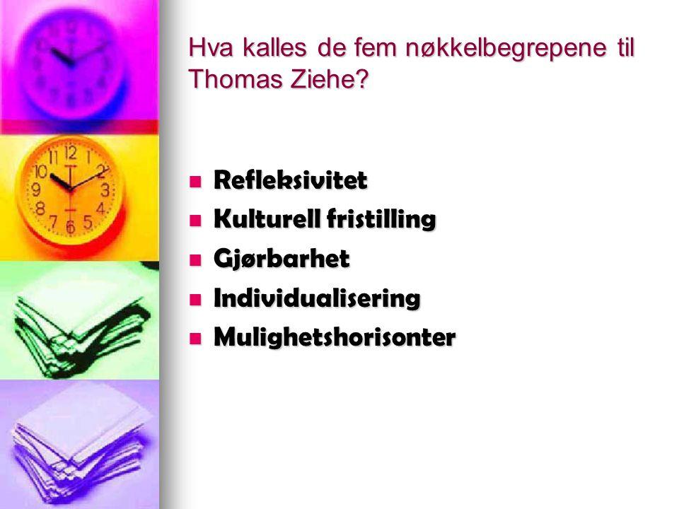 Hva kalles de fem nøkkelbegrepene til Thomas Ziehe