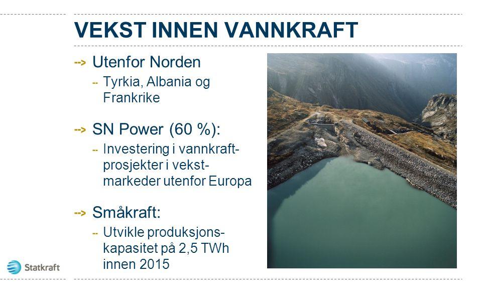 VEKST INNEN VANNKRAFT Utenfor Norden SN Power (60 %): Småkraft: