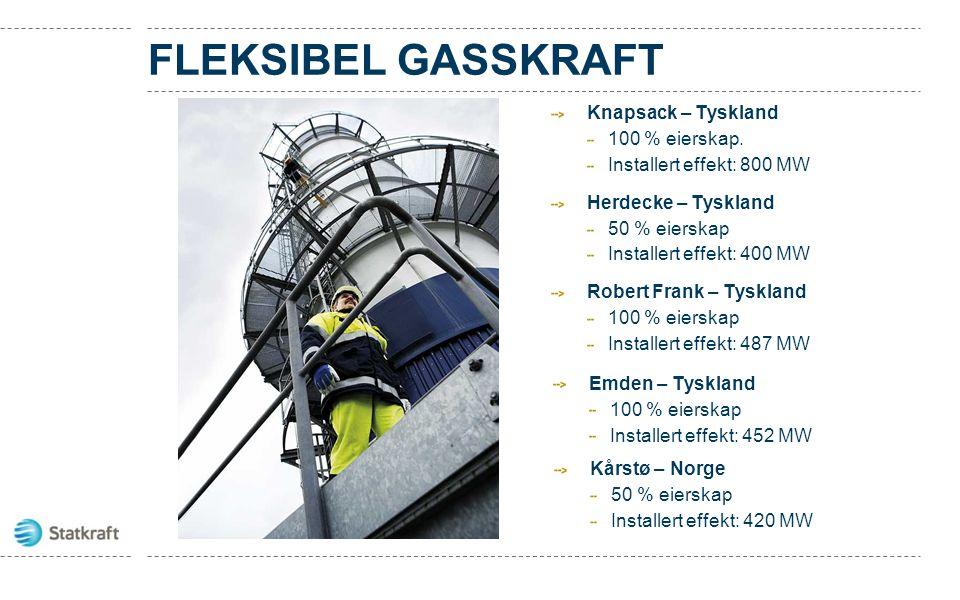 FLEKSIBEL GASSKRAFT Knapsack – Tyskland 100 % eierskap.