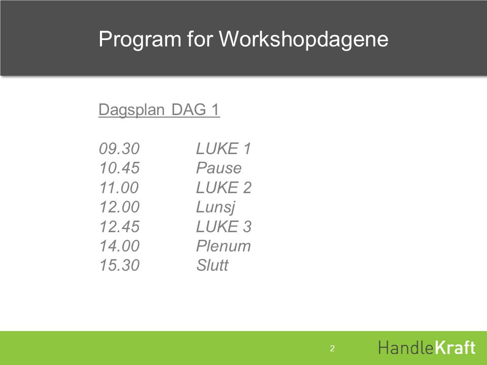 Program for Workshopdagene