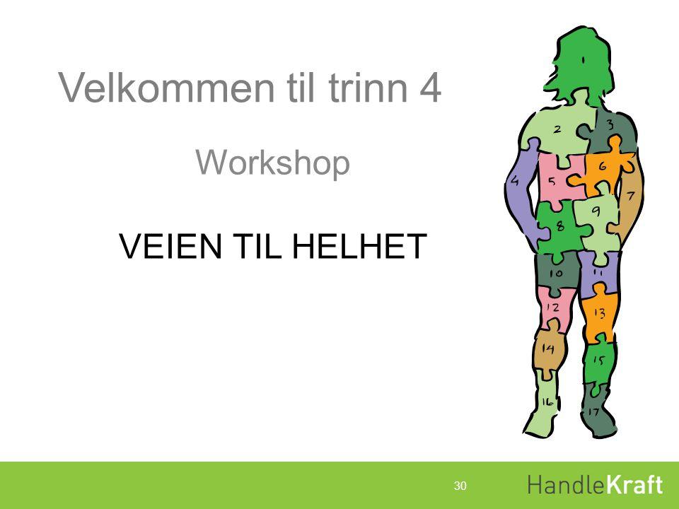Workshop VEIEN TIL HELHET