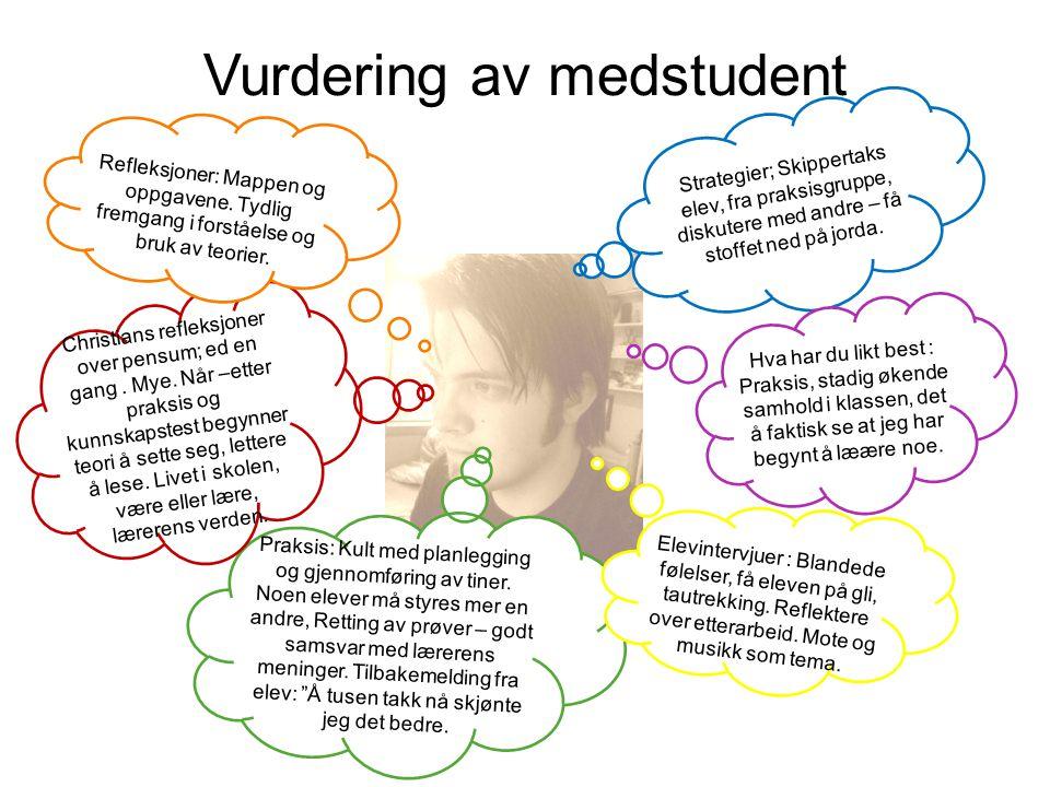 Vurdering av medstudent