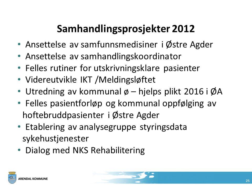 Samhandlingsprosjekter 2012