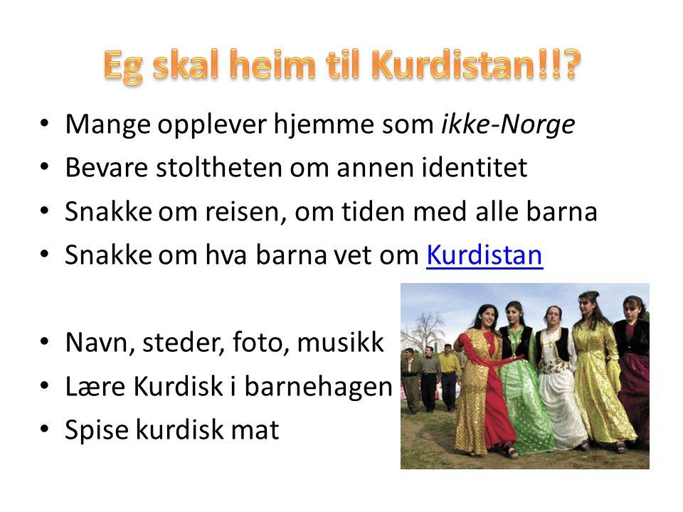 Eg skal heim til Kurdistan!!