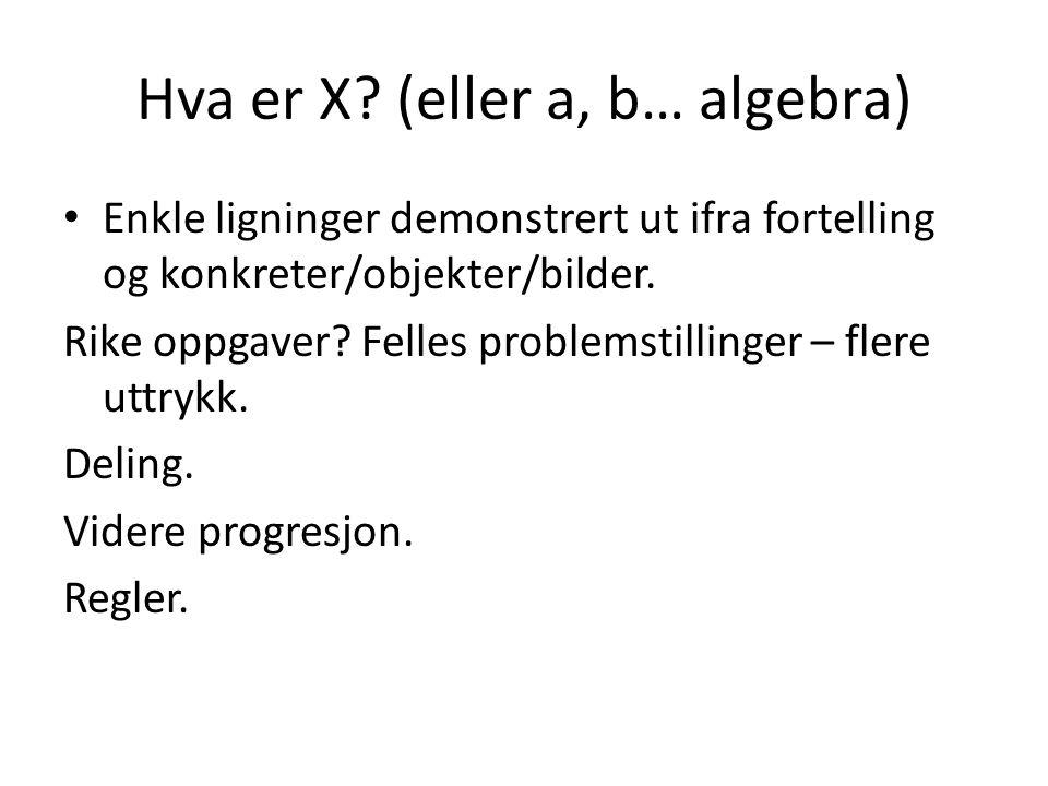 Hva er X (eller a, b… algebra)
