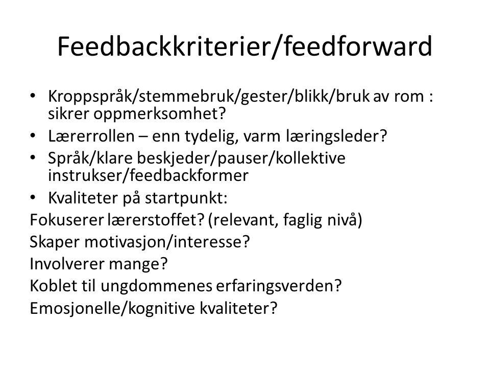 Feedbackkriterier/feedforward