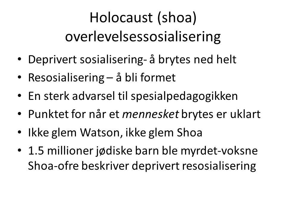 Holocaust (shoa) overlevelsessosialisering